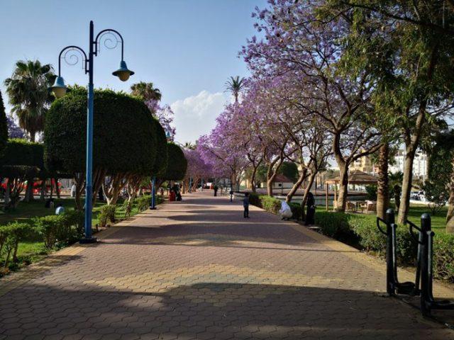 حديقة الاندلس السياحة في أبها